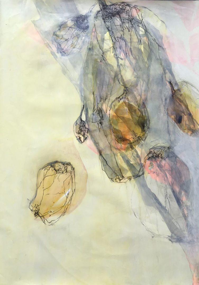 Quitte III - Acryl Lasur, Zeichnung auf Papier, 70 x 50 cm, 2018 ©Ursula Heermann-Jensen